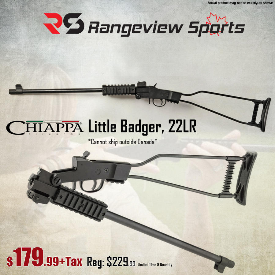 Name:  Chiappa Little Badger, 22LR.jpg Views: 690 Size:  112.0 KB