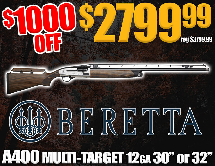 Name:  BERETTA A400 MULTI TARGET.jpg Views: 512 Size:  143.2 KB