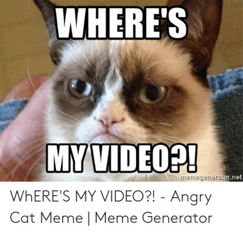 Name:  wheres-my-video-mermegenieraor-net-wheres-my-video-angry-cat-52766641.jpg